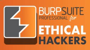 what is BurpSuite